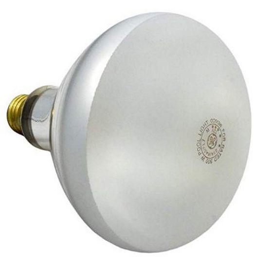 Pentair  Company Bulb  Flood 300W 12V