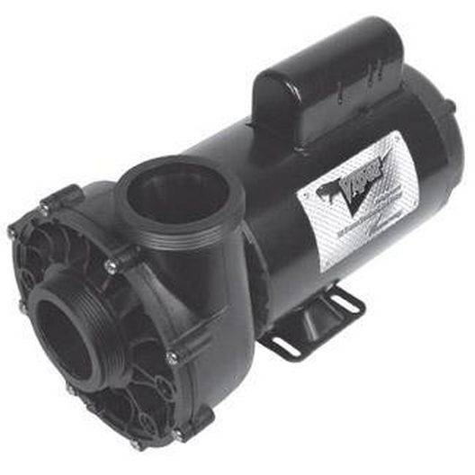 Waterway - Viper 56-Frame 4HP Dual-Speed Spa Pump, 2-1/2in. Intake, 2-1/2in. Discharge, 230V - 367361