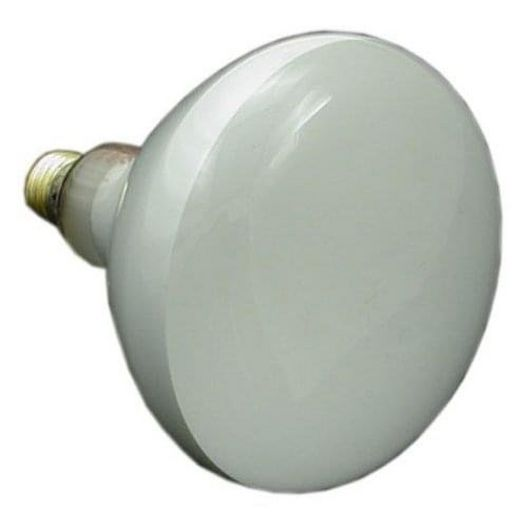 Replacement Lamp 300W 120V Pool