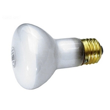 Jandy - Replacement Lamp 100W 120V