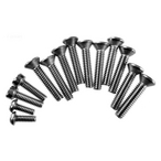 Pentair  1in Screw Kit with Double Wall Gasket