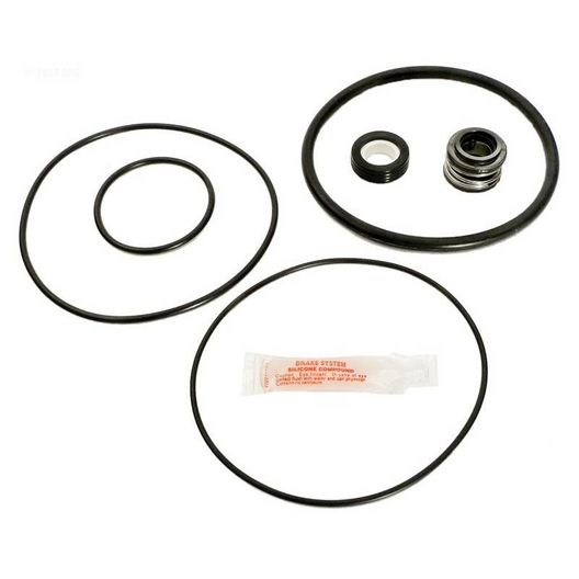 Pump Repair Kit w/Seals, O-Rings