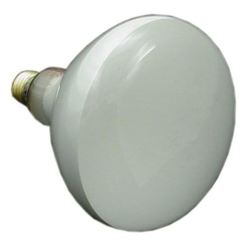 Jandy - Replacement Lamp 100W 12V