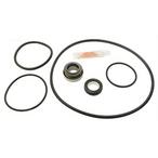 Hayward Tristar & Ecostar Series Pump Seal O-Ring Kit