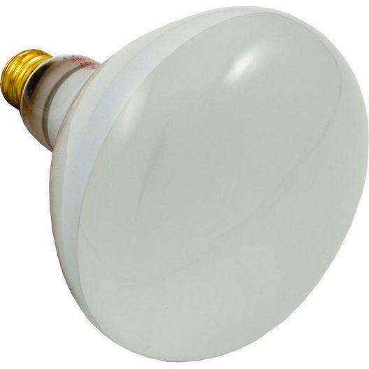 LIGHT BULB 120V 500W UPL