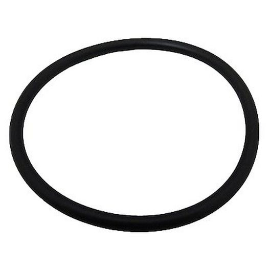 Pentair - O-Ring for Sta-Rite Dynamo Pool and Spa Pumps - 369648