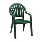 Pacific Fanback Resin Chair, Amazon Green