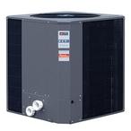 Raypak  Raypack R6450ti-E 119K BTU Heat Pump Digital Titanium