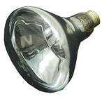 LIGHT BULB 12V 100W UPL