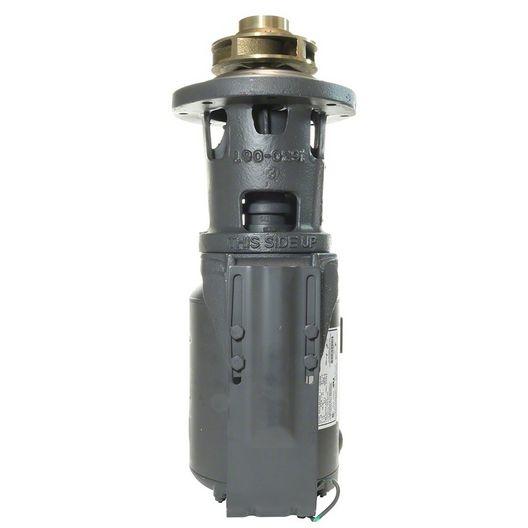 Raypak  Integral Pump 4 Impeller