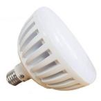 J&J Electronics - ColorSplash LXGW LED 120V RGB and White Pool Light Bulb - 383758