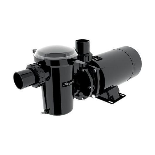 Raypak  ProtegeTM 1.0 HP Above Ground Pool Pump 110/115V