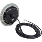 LED EvenGlow Pool Light Color Change  30 ft cord
