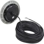 LED EvenGlow Pool Light Color Change  150 ft cord