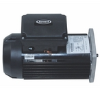Jacuzzi - TEFC 56Y 1-HP Squared Single Speed Pool Motor - 38709