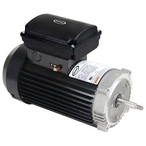 JMR75T 1.25THP TEFC Pool Motor