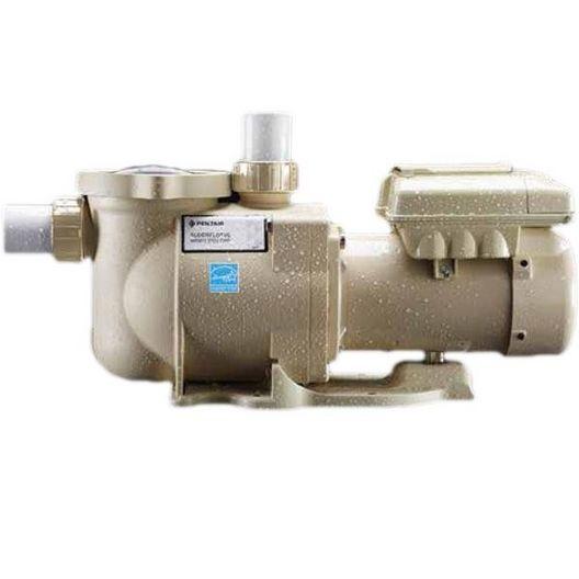 Pentair - EC-342001 - Variable Speed Pool Pump, 1.5 HP - Limited Warranty - 387245