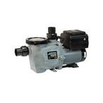 Waterway  Power Defender 165 Variable Speed Pool Pump 1.65 HP 230V