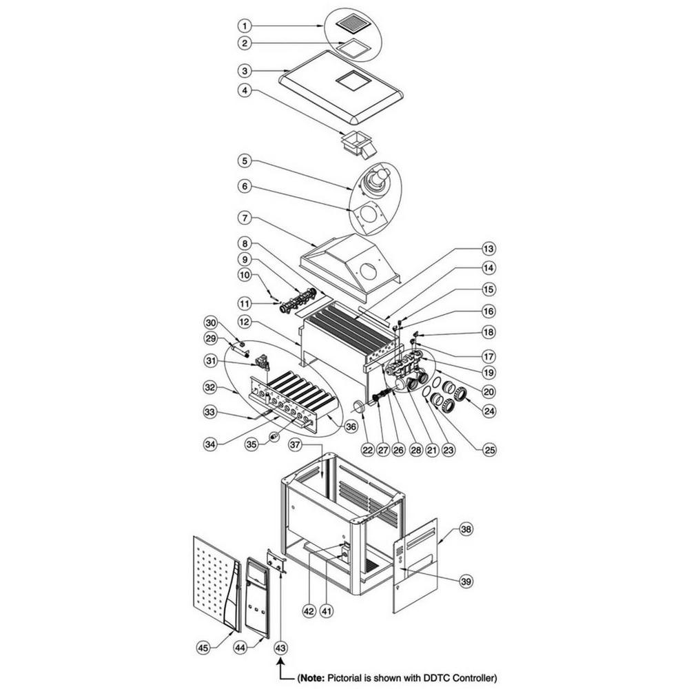 Pentair Heater MiniMax NT Series MiniMax NT LN: w/DDTC Controller image