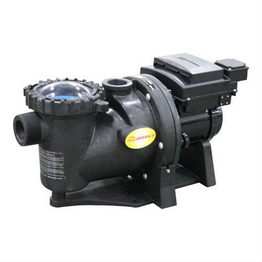 SunRunner 2.4 HP Variable Speed Energy Efficient Pool Pump
