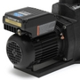 Variable Speed Pool and Spa Pump, 230V
