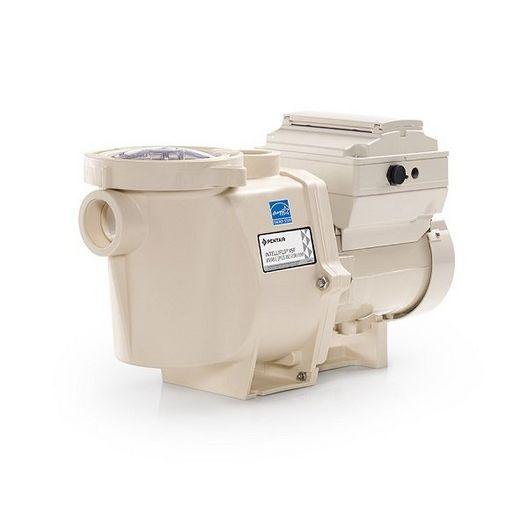Pentair - Pro Grade - 3 HP Intelliflo VSF Variable Speed and Flow Pump, 230V - Premium Warranty - 40178