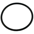 2in Spa Heater Union O-ring, #229, 2in Tailpiece O-ring