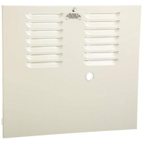 Pentair - Replacement Door assembly