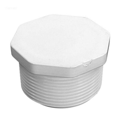 Pentair - 1-1/2 inch Plug