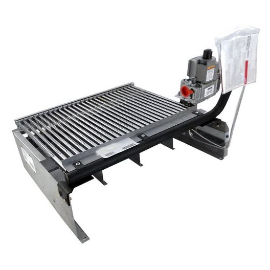 Raypak  Tray w/Gas Valve Natural Gas IID 266