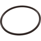 Pump Union O-Ring, 2 inch