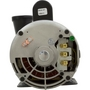 Spa Pump, Executive Series, 3.0 HP, 240v, 2-1/2 inch Suction (3-1/2 inch OD), 1 or 2 speed, 56 frame