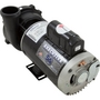 Spa Pump, Executive Series, 4.0 HP, 240v, 2 inch Side Discharge, 1 or 2 speed, 56 frame