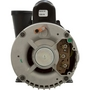 Spa Pump, Executive Series, 4.0 HP, 240v, 2-1/2 inch Suction (3-1/2 inch OD), 1 or 2 speed, 56 frame