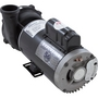 Spa Pump, Executive Series, 5.0 HP, 240v, 2-1/2 inch Suction (3-1/2 inch OD), 1 or 2 speed, 56 frame