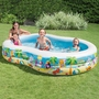 Paradise Seashore Above Ground Pool 103in x 63in