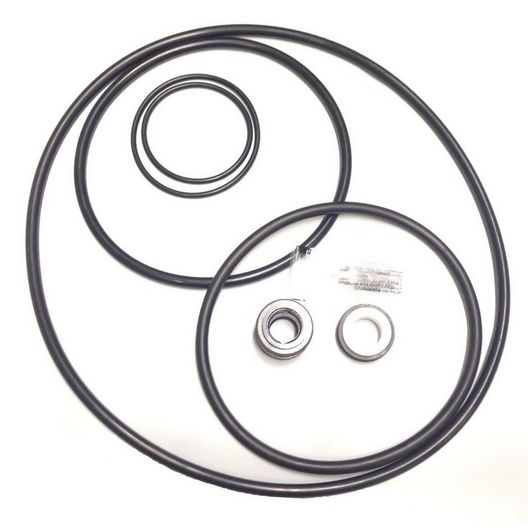Aladdin Equipment Co  O-Ring Kit Pac Fab Challenger Pump Rebuild Kit
