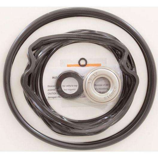 Go-Kit Purex WhisperFlo Pump Series O-Ring Kit - 40700