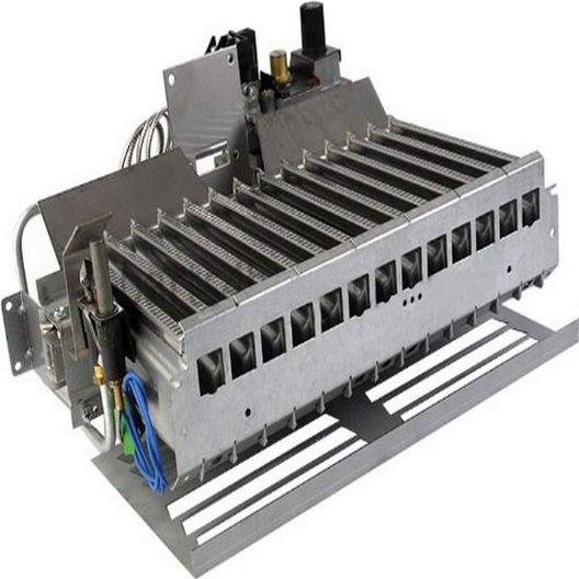 Pentair  Burner Tray Assembly 100 NG Mv