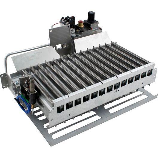 Pentair  Burner Tray Assembly Complete Propane MV