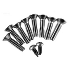 Pentair  Replacement Screw kit niche American 8 hole
