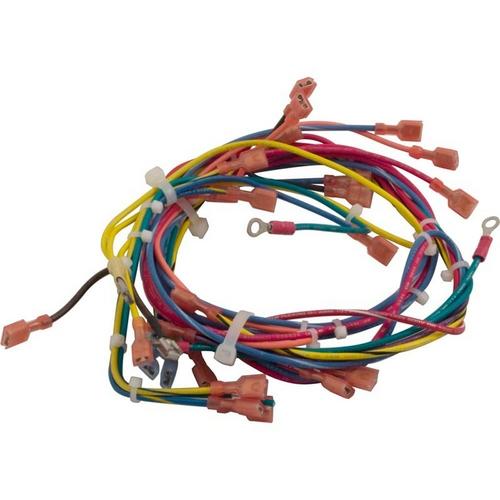 Raypak - Wire Harness, Dsi, 130