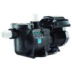 Variable Speed 1-1/2HP Pool Pump, 115/208-230V