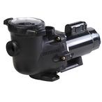 Hayward - EF1000 EnergyFlo RS Pump, 1 HP - 41102