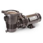 Pentair  EC-348200  OptiFlo 1 HP Above Ground Pool Pump  Limited Warranty