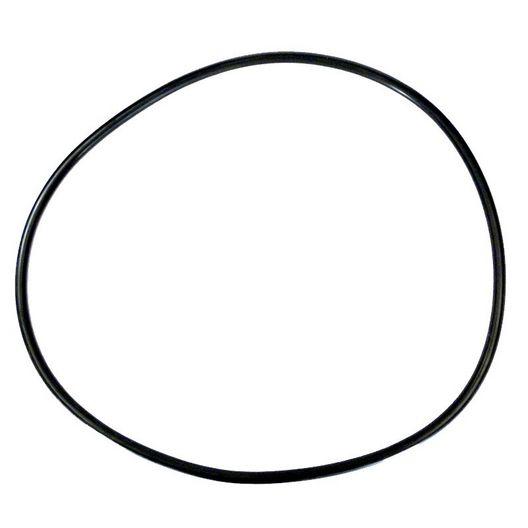 Pentair - 07 - O-Ring 4000 Series Lid - 423962