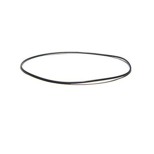 Gecko - Volute O-Ring for Aqua-Flo Flo-Master XP2 and Aqua-Flo Flo-Master XP2e Series Pumps - 424810