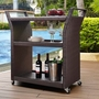 Palm Harbor Wicker Bar Cart