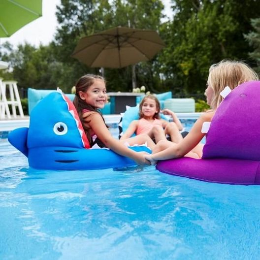 Big Joe  Mesh Pool Float