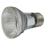 PAR16 60W Replacement Spa Light Bulb, 120V